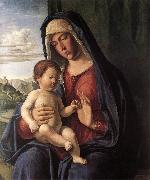 Madonna and Child dfhdt CIMA da Conegliano