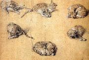 Six studies of a cat GAINSBOROUGH, Thomas