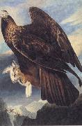 Golden Eagle John James Audubon